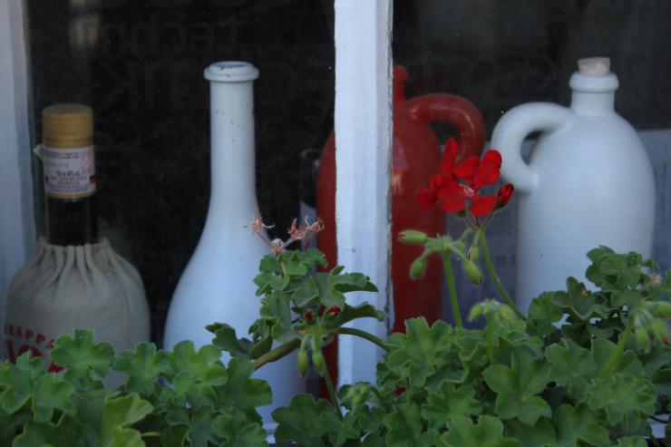Kwiaty w koszyckich oknach